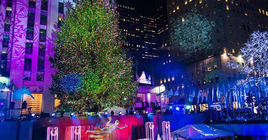 Рождественские елки мира
