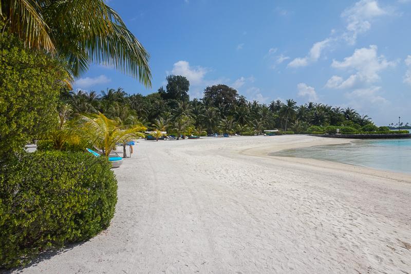 В этом году отели на Мальдивах делают большие скидки на проживание, т.к из-за кризиса не приехали туристы из России
