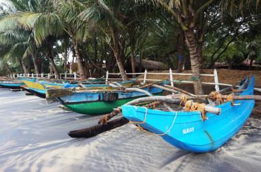 Самый дешевый отдых в Шри-Ланке: Аругамбей