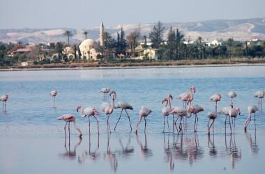 5 вещей, которые нужно сделать на Кипре