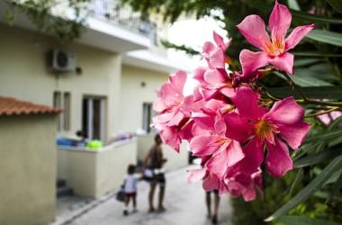В Грецию самостоятельно. Во сколько обойдется отдых на курорте «дикарем»